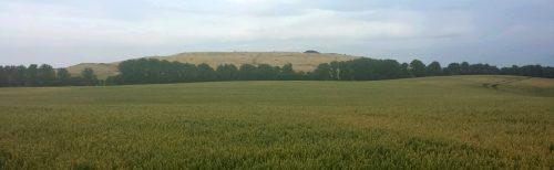 Die Deponie Ihlenberg bei Schönberg in Mecklenburg, auch als Deponie Schönberg bekannt, auf dem Gebiet von Sensor gelegen. Aufnahme von Norden aus Richtung Bockholzberg / Foto: Deponie 2015