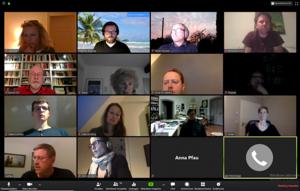 Grüne Webkonferenz